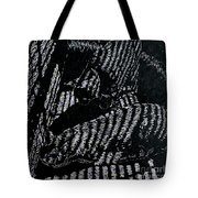Curious Cats  Tote Bag