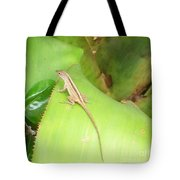 Curious Lizard I Tote Bag