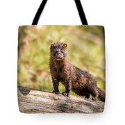Curious Mink Tote Bag