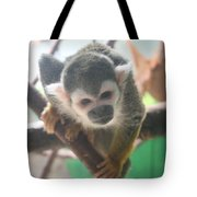 Curious Monkey Tote Bag