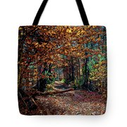 Curious Path In Autumn Tote Bag