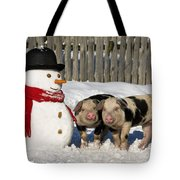 Curious Piglets And Snowman Tote Bag