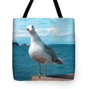Curious Seagull Tote Bag