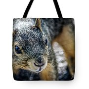 Curious Squirrel Tote Bag