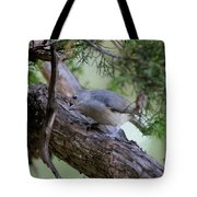 Curious Thought Tote Bag