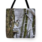 Curious White-backed Woodpecker Tote Bag