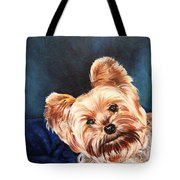 Curious Yorkie Tote Bag