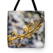Curled Fern Frond Tip Tote Bag