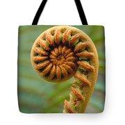 Curled Fern Tote Bag
