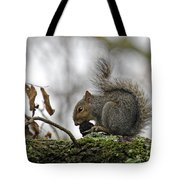 Curled Tail Tote Bag