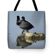 Curly, Moe, And Larry Tote Bag