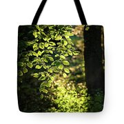 Curtain Of Leaves Tote Bag