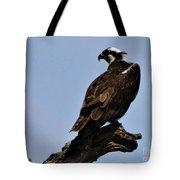 Curved Osprey Tote Bag