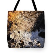 Curves And Colors In Nature Tote Bag