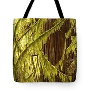Curves In The Rainforest Tote Bag