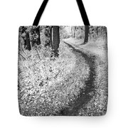 Curving Path Through Woods Tote Bag