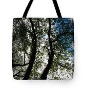 Curvy Trees Tote Bag