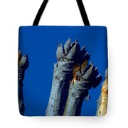 Cussonia In Blue Tote Bag