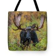Custer In Autumn Tote Bag