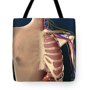 Cutaway View Of Male Chest Showing Lung Tote Bag