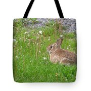 Cute And Fluffy Tote Bag