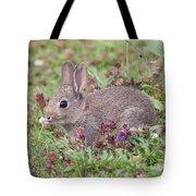 Cute Baby Bunny Tote Bag