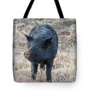 Cute Black Pig Tote Bag