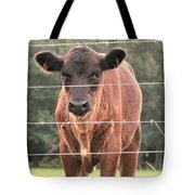 Cute Calf Tote Bag