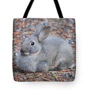 Cute Campground Rabbit Tote Bag