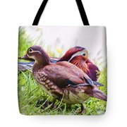 Cute Couple - Mandarin Ducks Tote Bag