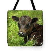 Cute Cow Tote Bag by Terri Waters