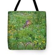 Cute Critter Tote Bag