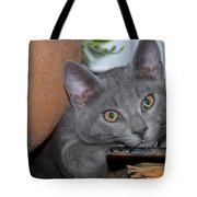 Cute Even If Looking A Bit Bored Tote Bag