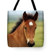 Cute Foal Tote Bag