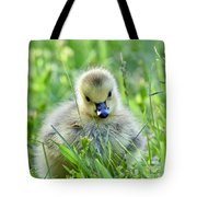 Cute Goose Chick Tote Bag