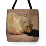 Cute Ground Squirrel Burrowing In The Dirt Tote Bag