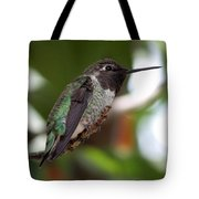 Cute Hummingbird Ready For Action Tote Bag