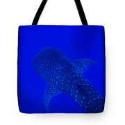 Cute Little Fishy...... Tote Bag