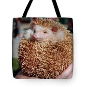 Cute Little Hedge Ball Tote Bag