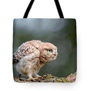 Cute Little Owlet Tote Bag