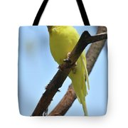 Cute Little Parakeet Resting On A Branch Tote Bag