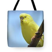 Cute Little Yellow Parakeet In The Rainforest Tote Bag