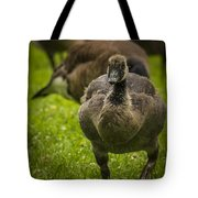 Cute On The Move Tote Bag