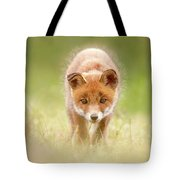 Cute Overload Series - Baby Fox Exploring The World Tote Bag