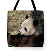 Cute Panda Bear Eating A Green Shoot Of Bamboo Tote Bag
