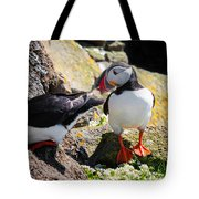 Cute Puffin Couple In Iceland Latrabjarg Tote Bag