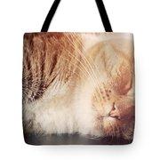 Cute Small Cat Sleeping Tote Bag