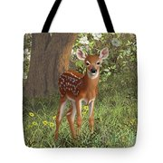 Cute Whitetail Fawn Tote Bag by Crista Forest