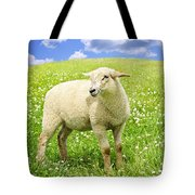Cute Young Sheep Tote Bag by Elena Elisseeva