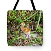 Cutie-beauty Tote Bag